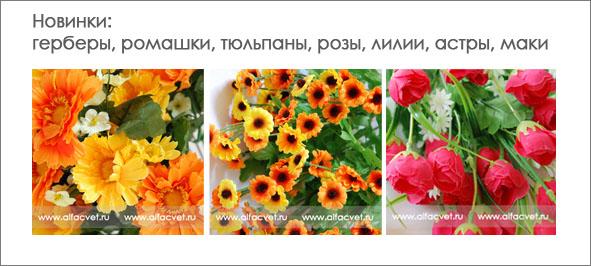 Волгоград купить цветы оптом купить семена гавайской розы в казахстане
